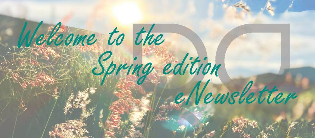 summer edition newsletter, 2020 the year in review